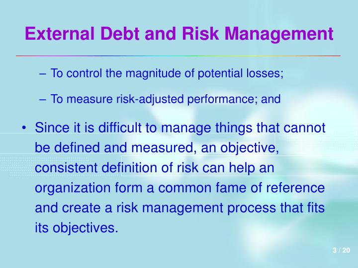 External debt and risk management3