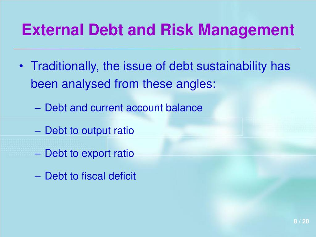 External Debt and Risk Management