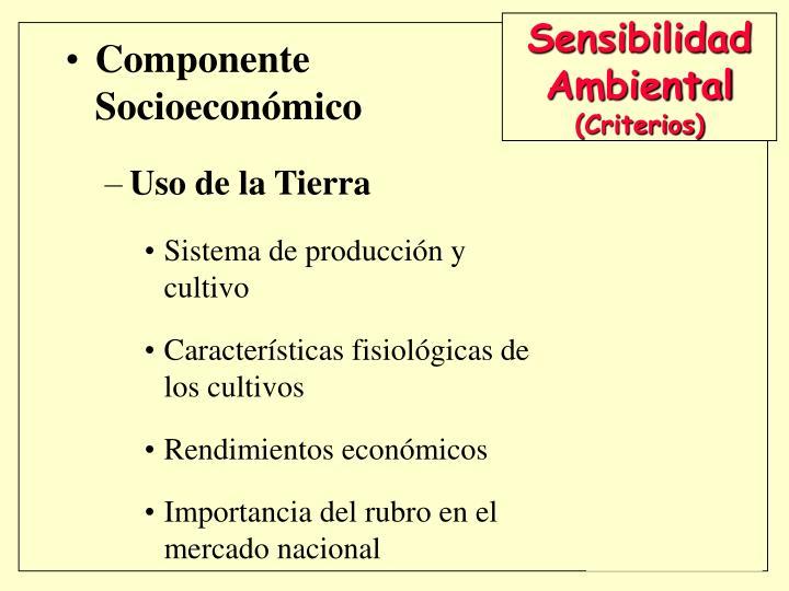 Componente Socioeconómico