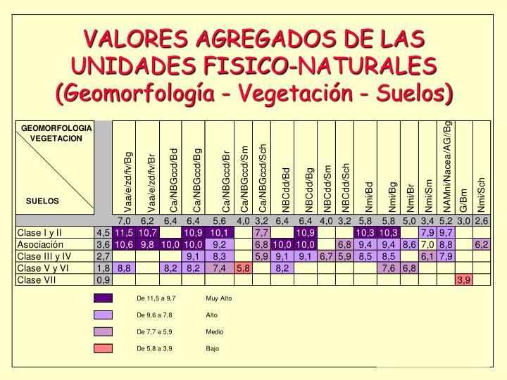 VALORES AGREGADOS DE LAS UNIDADES FISICO-NATURALES (Geomorfología - Vegetación - Suelos)