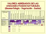 valores agregados de las unidades fisico naturales geomorfolog a vegetaci n suelos