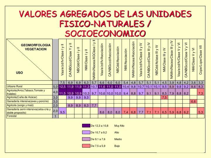 VALORES AGREGADOS DE LAS UNIDADES FISICO-NATURALES / SOCIOECONOMICO