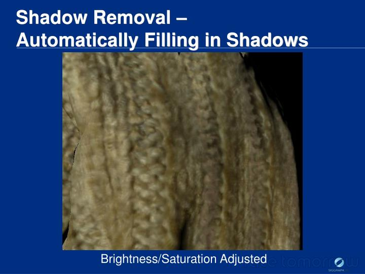 Shadow Removal –
