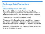 exchange rate fluctuations28