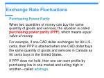 exchange rate fluctuations33