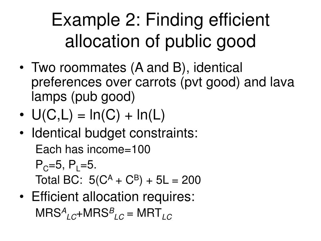 Example 2: Finding efficient allocation of public good