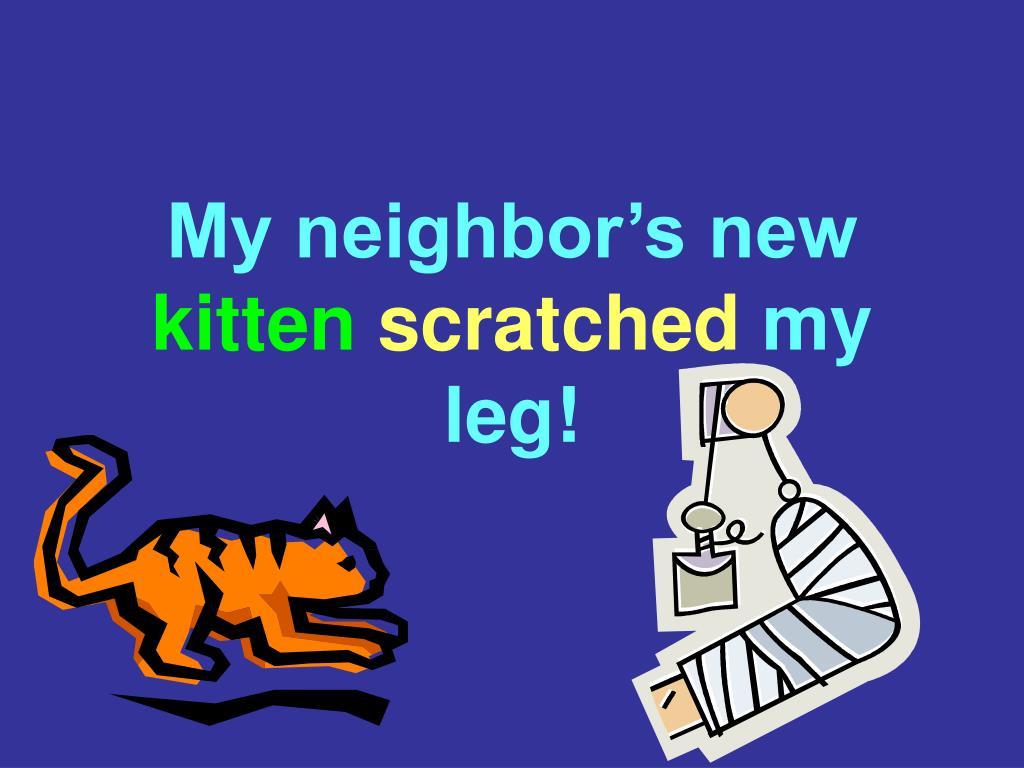My neighbor's new
