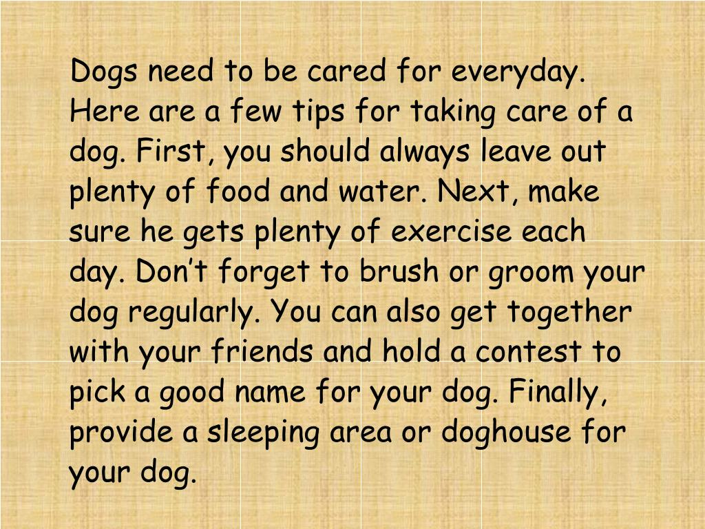 Dogs need to be cared for everyday. Here are a few tips for taking care of a dog. First, you should always leave out plenty of food and water. Next, make sure he gets plenty of exercise each day. Don't forget to brush or groom your dog regularly. You can also get together with your friends and hold a contest to pick a good name for your dog. Finally, provide a sleeping area or doghouse for your dog.