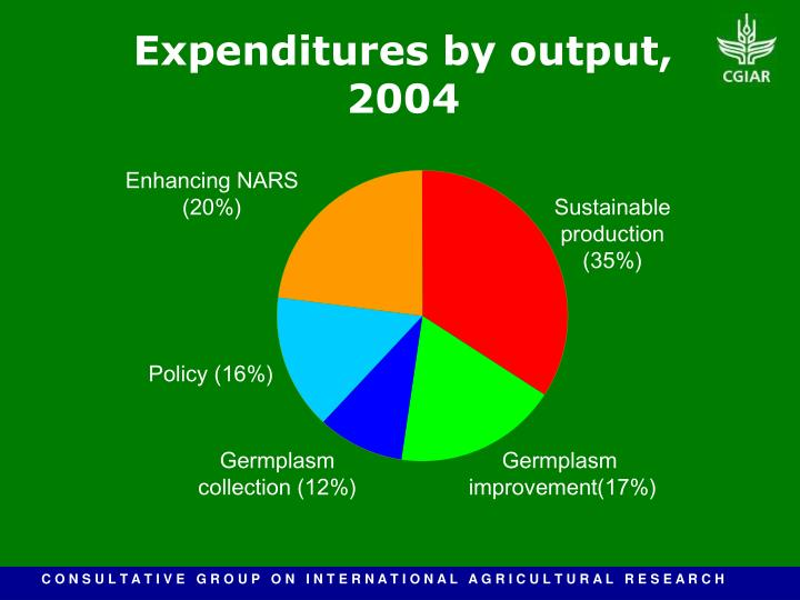 Expenditures by output, 2004