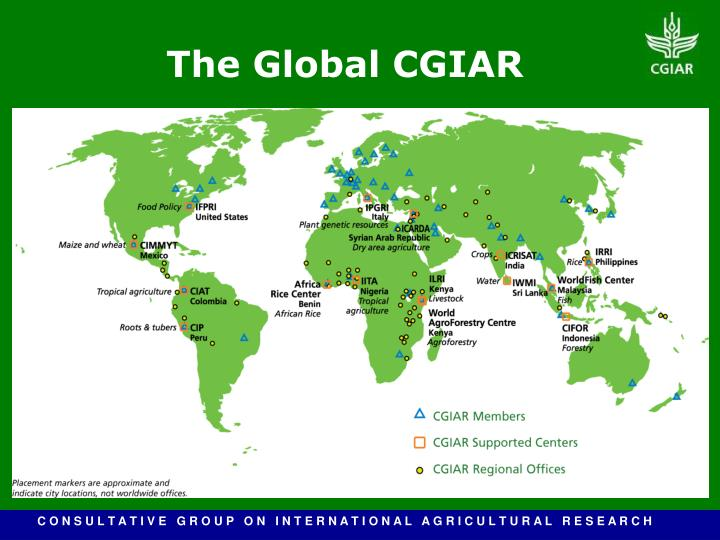 The Global CGIAR