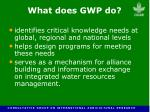 what does gwp do