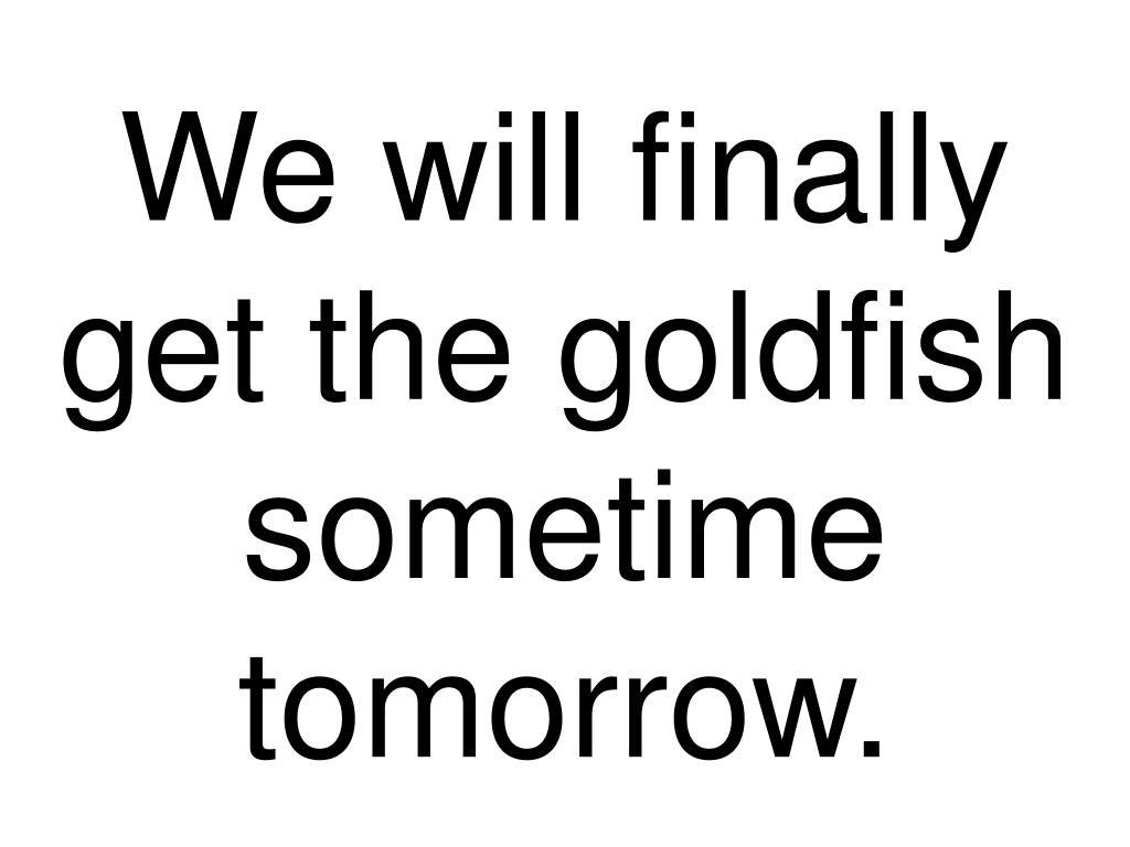 We will finally get the goldfish sometime tomorrow.