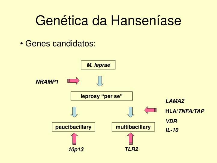 Genética da Hanseníase
