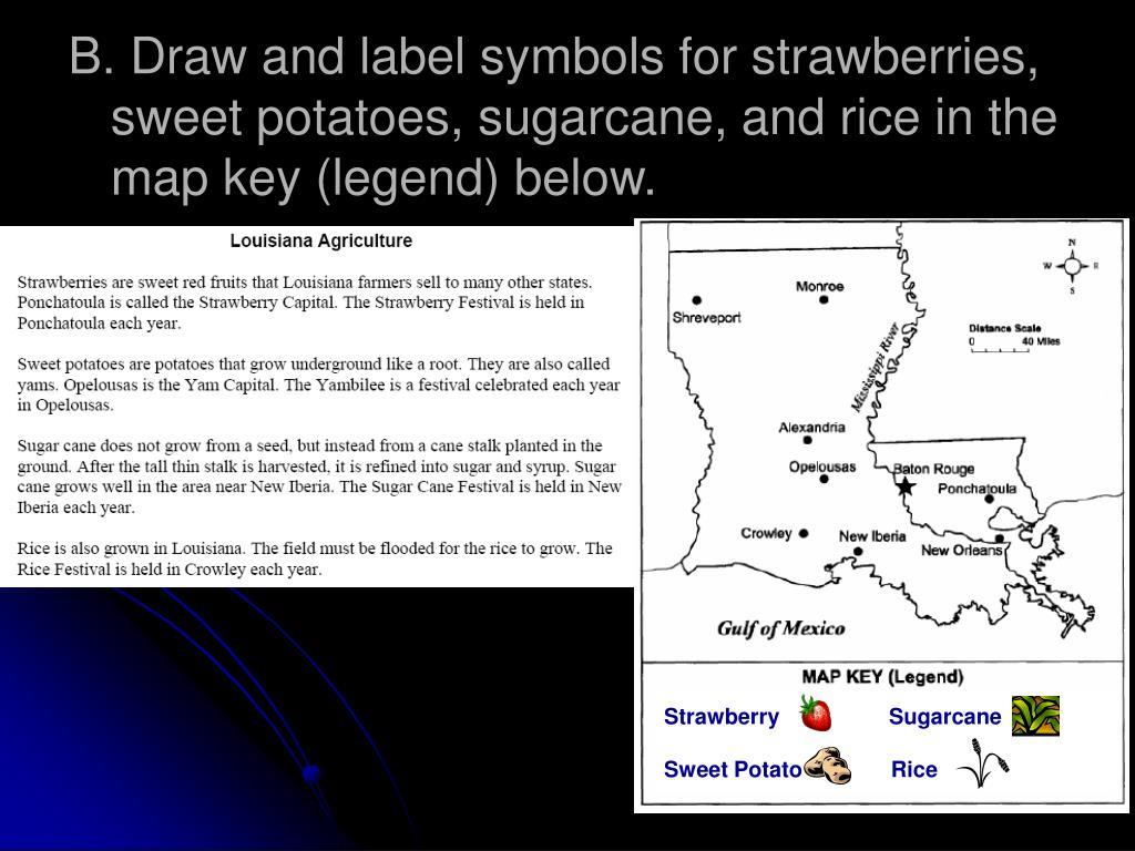 Strawberry                  Sugarcane