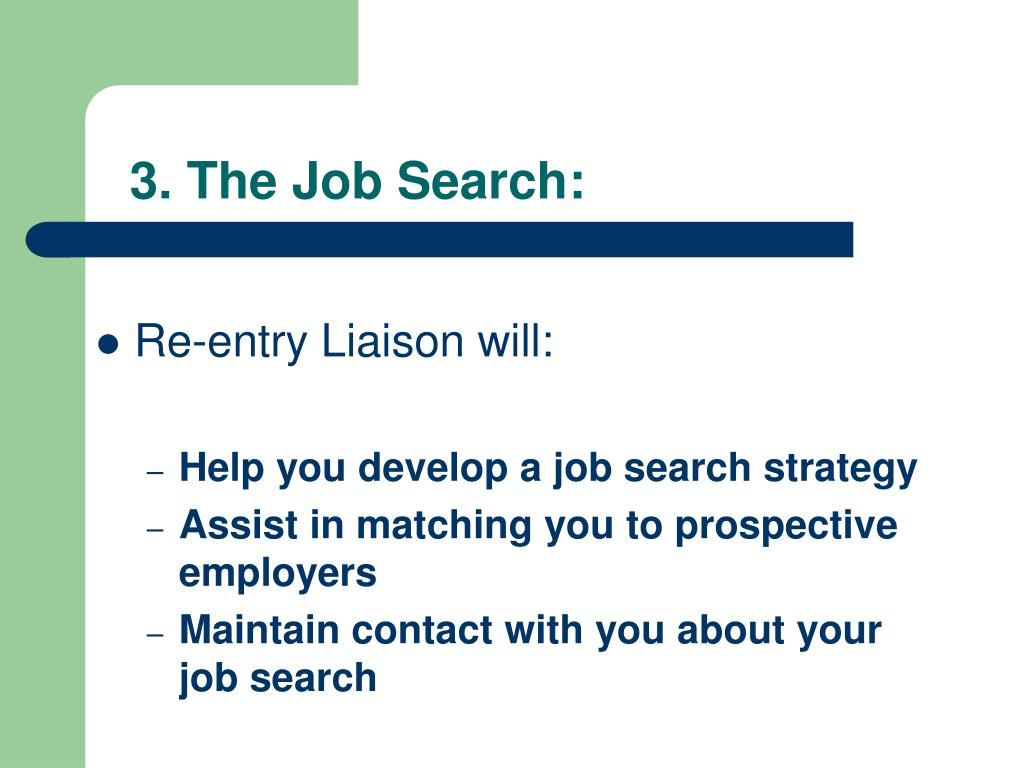 3. The Job Search: