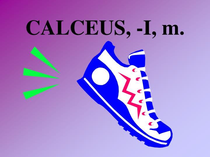 CALCEUS, -I, m.