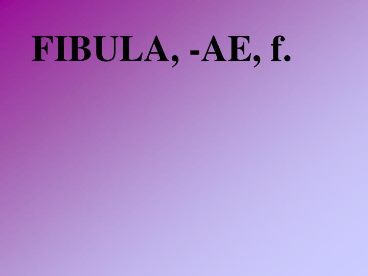 FIBULA, -AE, f.