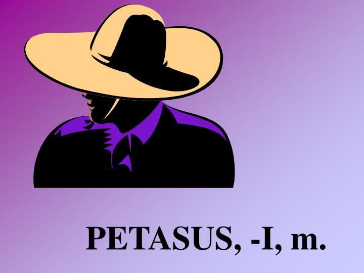 PETASUS, -I, m.