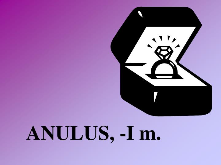 ANULUS, -I m.