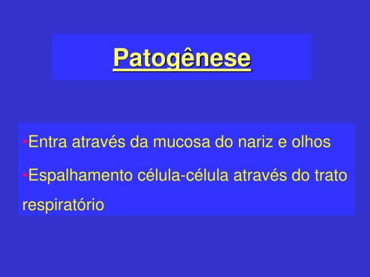 Patogênese