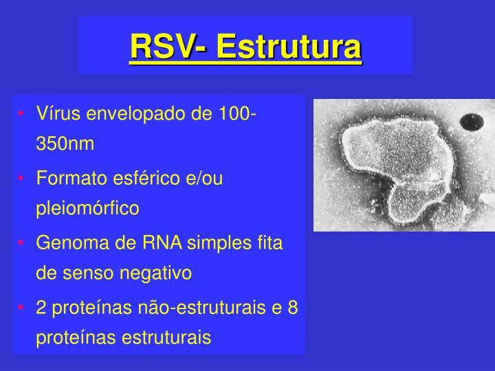RSV- Estrutura