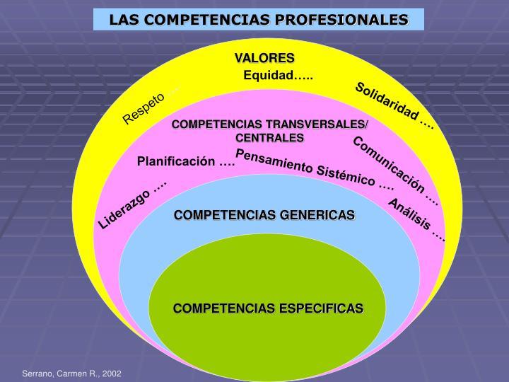 LAS COMPETENCIAS PROFESIONALES