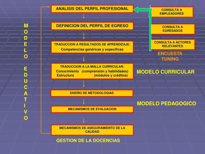 ANALISIS DEL PERFIL PROFESIONAL