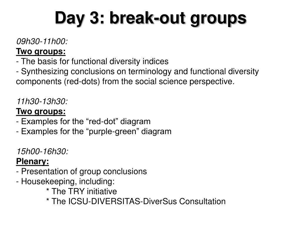 Day 3: break-out groups