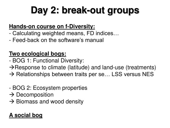 Day 2: break-out groups