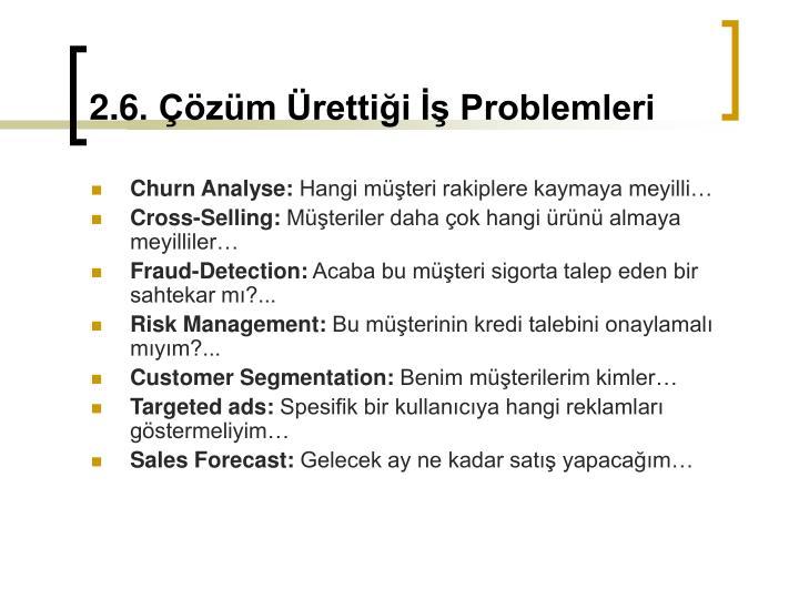 2.6. Çözüm Ürettiği İş Problemleri
