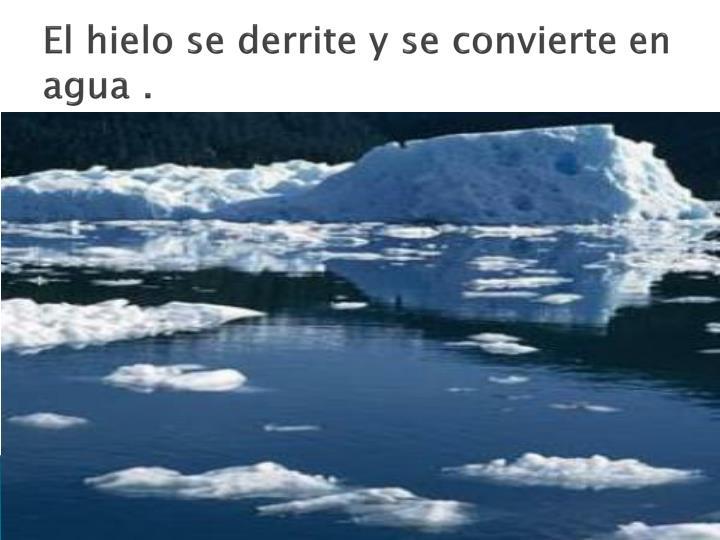 El hielo se derrite y se convierte en agua .