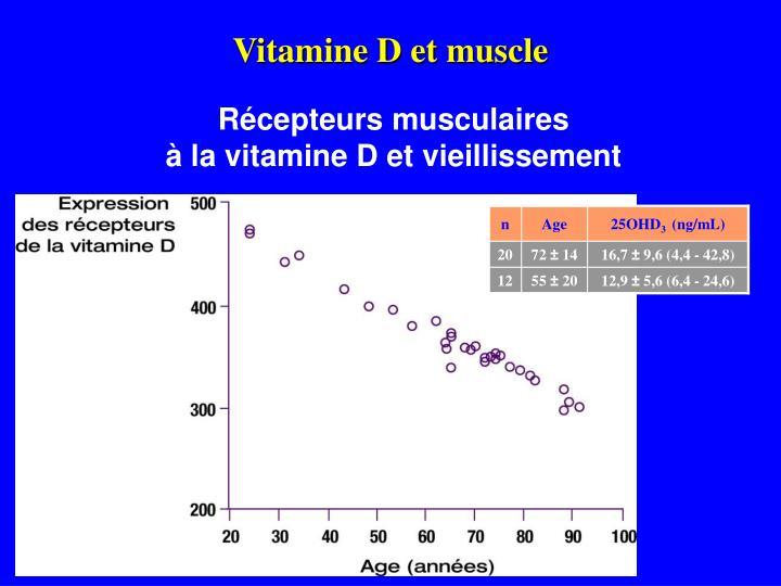 Vitamine D et muscle