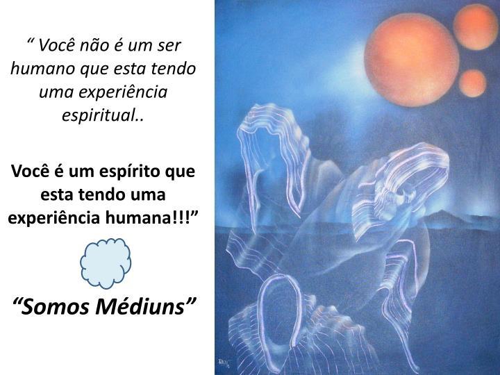 """"""" Você não é um ser humano que esta tendo uma experiência espiritual.."""