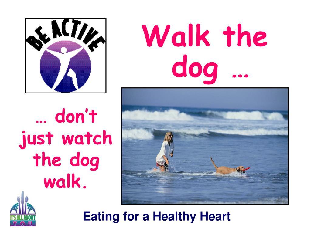 Walk the dog …