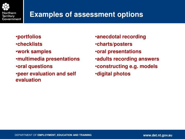 Examples of assessment options