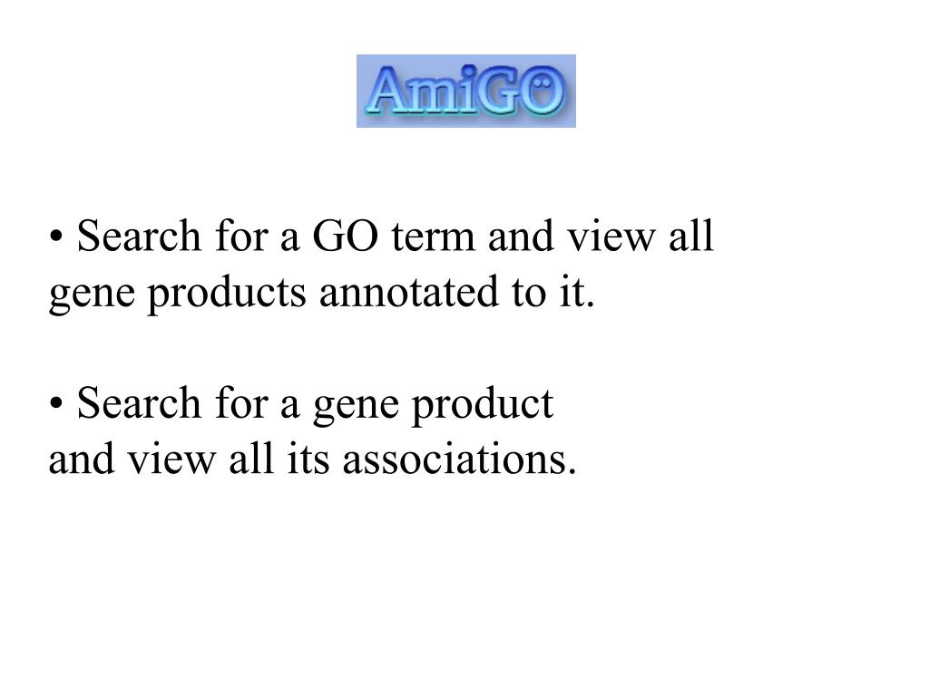 Search for a GO term and view all gene products annotated to it.