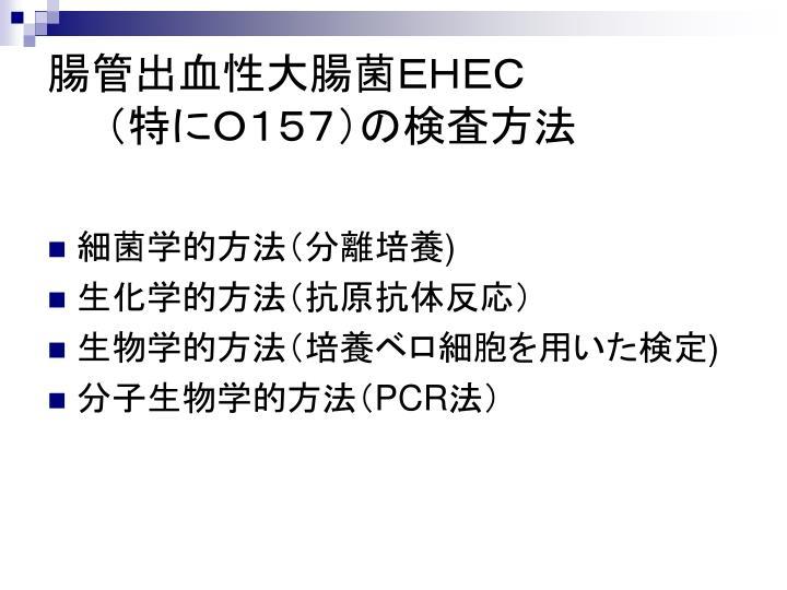 腸管出血性大腸菌EHEC