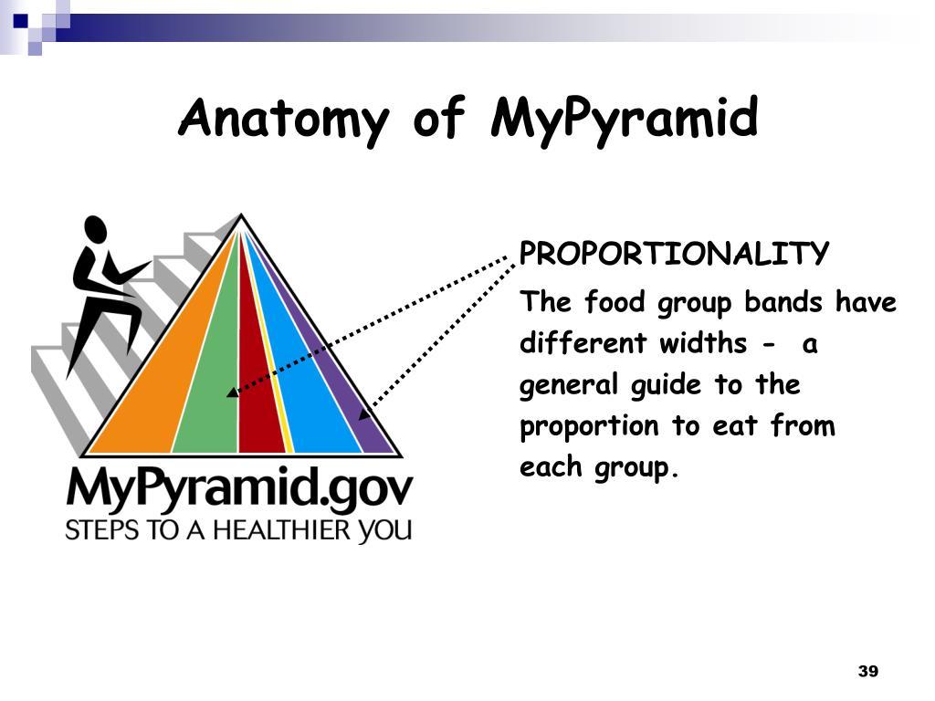 Anatomy of MyPyramid