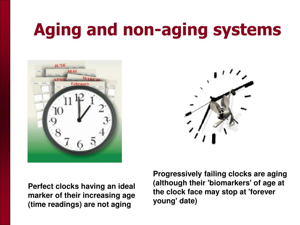 Aging and non-aging systems