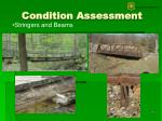 condition assessment17