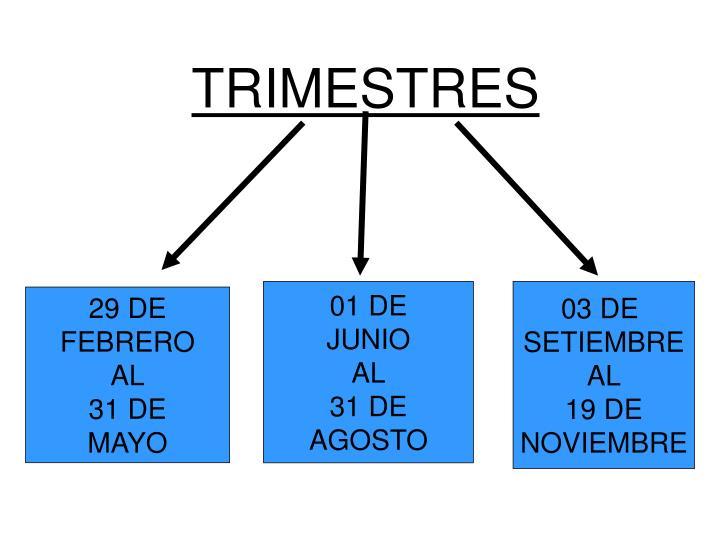 TRIMESTRES