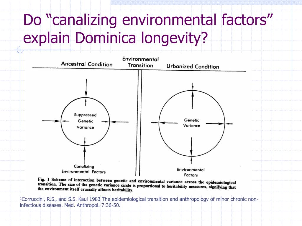 "Do ""canalizing environmental factors"""