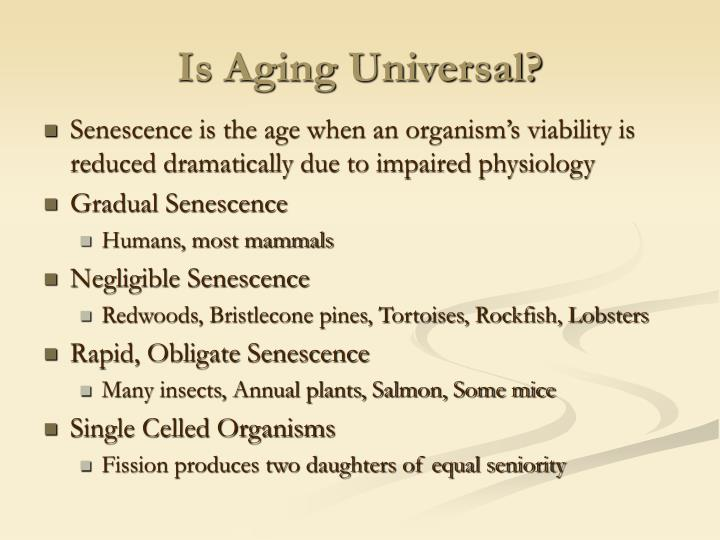 Is aging universal