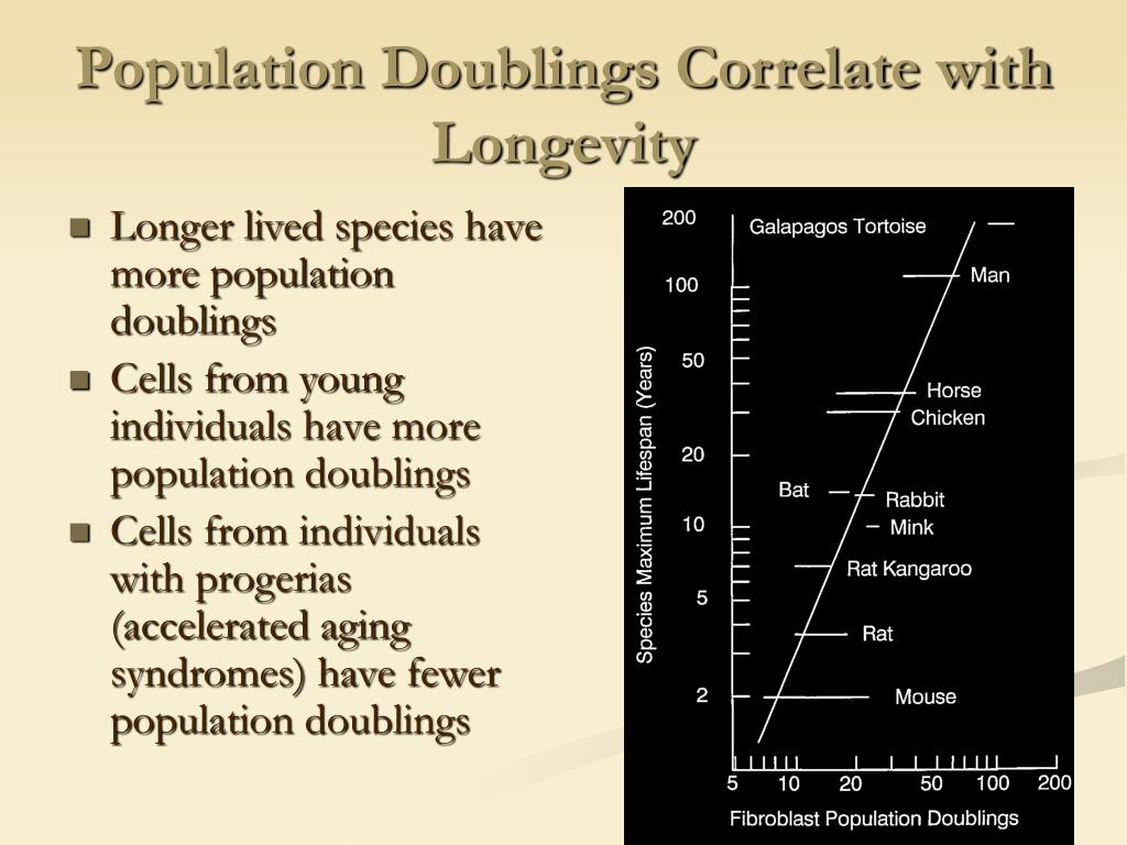 Population Doublings Correlate with Longevity