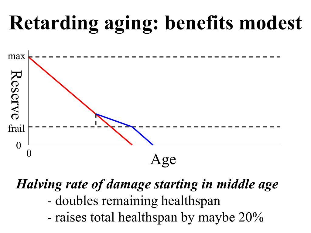 Retarding aging: benefits modest