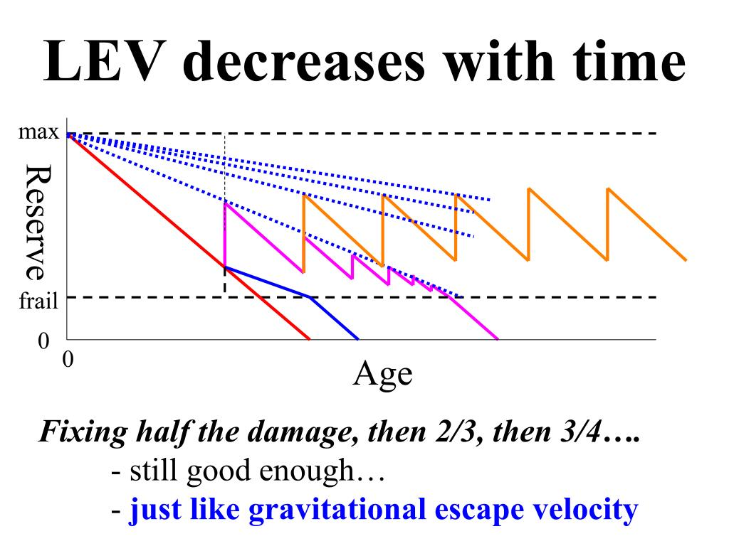 LEV decreases with time