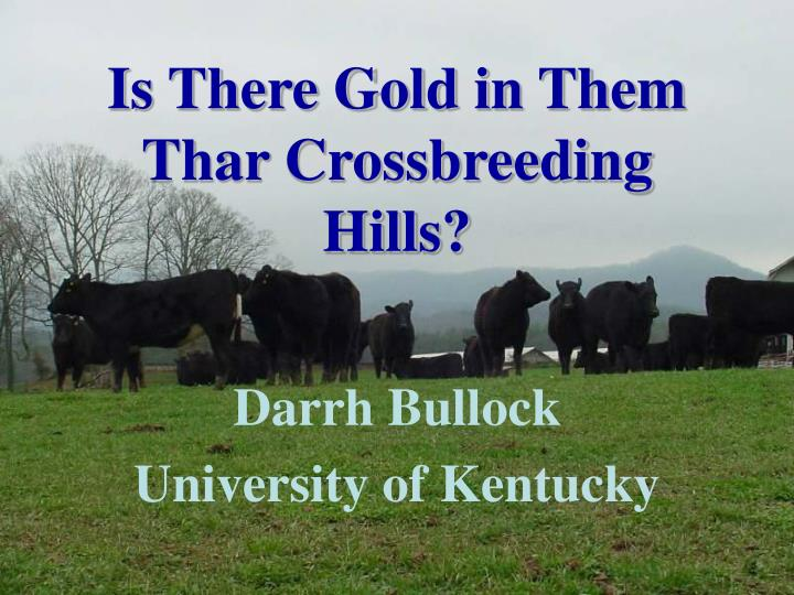 Is there gold in them thar crossbreeding hills