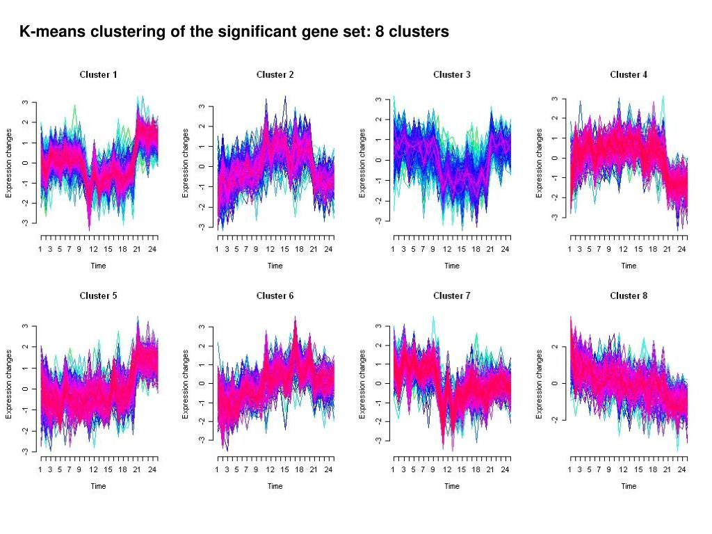 K-means clustering of the significant gene set: 8 clusters