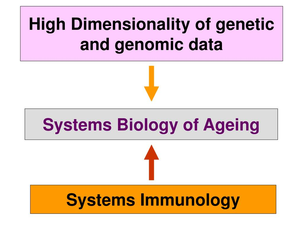 High Dimensionality of genetic