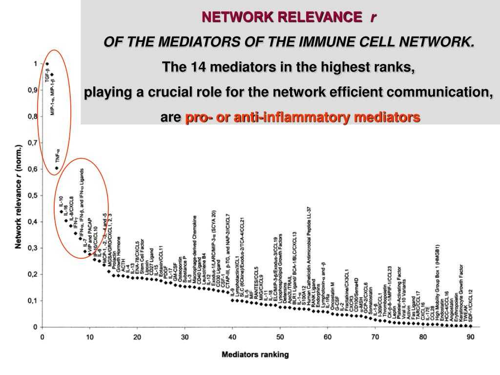 NETWORK RELEVANCE